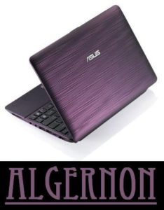 Algernon - the netbook and statement piece
